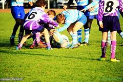 Brest Vs Plouzané (56) (richardcyrille) Tags: buc brest bretagne rugby sport finistére plabennec edr extérieur
