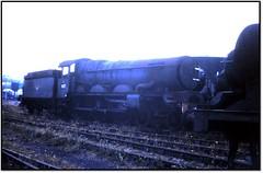 GW Castle at Barry (trafalgar45682) Tags: castle steam barry scrapyard sixties thornbury 7027