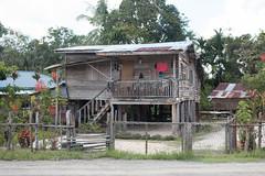 IMG_2444 (Cthonus) Tags: geotagged malaysia borneo longhouse rungus runguslonghouse