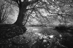 Mill Pond (Russ Barnes Photography) Tags: lake mill water stone pond infrared warwickshire