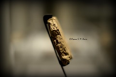 Newly Discovered Tablet V of the Epic of Gilgamesh (Sumer and Akkad!) Tags: museum iraq tablet mesopotamia kurdistan gilgamesh enkidu cedarforest humbaba sulaimaniya cuneiforminscription epicofgilgamesh sulaymaniyahmuseum