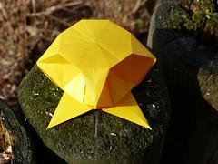 """Alien Box"" Landing (esli24) Tags: origami paperfolding jorgejaramillo juliaschönhuber esli24 ilsez alienbox origamipaperbox"