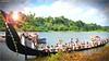 IMG_3954 (|| Nellickal Palliyodam ||) Tags: india race boat snake kerala krishna aranmula avittam parthasarathy vallamkali palliyodam malakkara nellickal jalothsavam