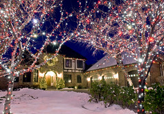 Scene Shot_35 (Christmas World) Tags: lighting christmas trees house holiday tree lights purple garland led patio wreath incandescent c9 c7 supermini christmaslitescom villagelightingcompany