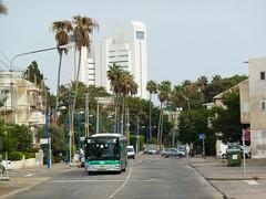 87-089-01 (33134) (Elad283) Tags: man bus haifa ישראל egged אוטובוס merkavim אגד 33134 eggedbus nl313f israelbus 8708901