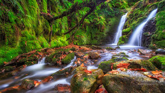 Venford Brook Twin Falls (LeePellingPhotography.co.uk) Tags: secret autumn brook colours country falls fern landscape leaves lush moss mystical ndfilter rocks tree venford waterfall
