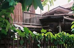 wood house (chattotomato) Tags: film analog 35mm minolta rangefinder ishootfilm fujifilm himatic7s filmisnotdead