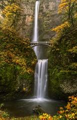 Multnomah Falls Classic (Cole Chase Photography) Tags: multnomahfalls oregon columbiarivergorge pacificnorthwest