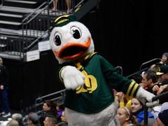 University of Oregon vs Cal (LarrynJill) Tags: college sports oregon athletics university ducks competition mascot eugene uo volleyball mattarena