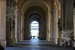 ReggiaCaserta_Interni_003