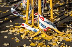 DSC_8266 (adrizufe) Tags: autumn nikon ngc otoño prohibido durango basquecountry suelo udazkena prohibidoaparcar hojassecas durangokoazoka nikonstunninggallery aplusphoto d7000 adrizufe adrianzubia
