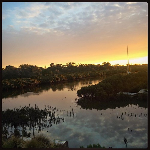311/365 • outside right now - for you @littleearthstories and @keiranlusk • #311_2015 #sunset #inlet #boatyard #reflections #sky #mangroves #viewfromthecockpit #Spring2015