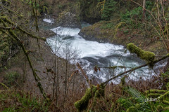 2015-07881 (jjdun7) Tags: water oregon creek forest river landscape waterfall buttecreekfalls santiamstateforest
