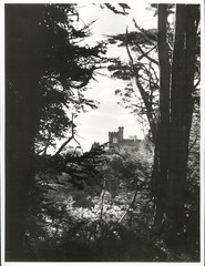 Larnach Castle (Archives New Zealand) Tags: newzealand architecture nz archives southisland otago dunedin 1902 newzealandhistory archivesnewzealand nzhistory archivesnz
