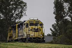 Staying Dry (lennycarl08) Tags: railroad trains northbay geep railraod burlingtonnorthernsantafe santaferairoad