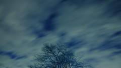 ふたご座流星群 画像6