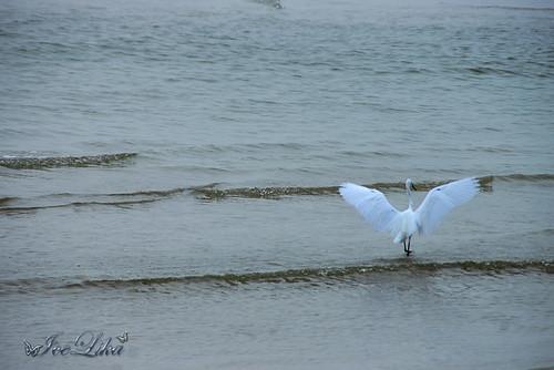 Hua Hin. Beach