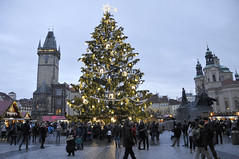 Old town square (Pikaluk) Tags: people lights prague dusk christmastree czechrepublic oldsquare 2015 pragueatchristmas