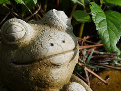 P1050753 (gh5d) Tags: macro statue olympus frog 60mm gh4