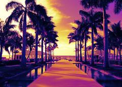 Key West 3326bf 5x7 HM (edgarandron - Busy!) Tags: florida keys floridakeys keywest higgsbeach casamarina sensational