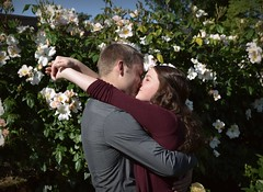 N&N engagement (I'm a sea) Tags: peninsula park portland oregon rose garden roses flowers kiss kissing couple cute together engaged engagement save date photos sister love marriage embrace nikon