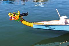 Swift Racing (skipmoore) Tags: sausalito dragonboat swiftracing