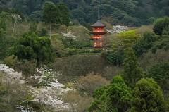 Taisanji (Pixel Bucket) Tags: japan kansai journey kyoto reise asia tempel travel urlaub holiday buddhism kiyomizudera shinto shrine temple trip vacation taisanji pentax