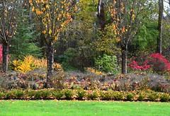 Autumn (careth@2012) Tags: scenery scene scenic view landscape autumn fall nature