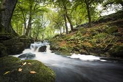 Manor kilbride (zerohamster) Tags: river manor kilbride long exposure foam forrest trees water