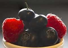 Macro-Mondays_BACKLIT (Roger Brown (General)) Tags: backlit macro mondays focus stacking fruit blueberries raspberries canon 7d sigma 105mm close up macromondaysbacklit
