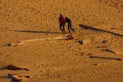 Warren Dunes State Park Sawyer Michigan at the Golden Hour 10-23-2016 0024 (www.cemillerphotography.com) Tags: transverse parabolic linear perched windblown berriencounty sawyer southwestmichigan harborcountry redarrowhighway recreation kiteflying waves lakemichigan marramgrass blowout valley hills ridge camping hiking