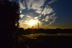 20161014_047_2 () Tags:       silhouette