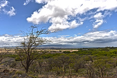 Lapakahi State Historical Parkr1 (broncoblair) Tags: hawaii bigisland hdr waipio valley lapakahi nikond600 nikon