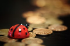 Penny Lane ~ The Beatles (s@ssyl@ssy) Tags: macro macromondays beatles beatle ladybug penny pennies lane beatlesbeetles beetle