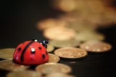 Penny Lane ~ The Beatles (s@ssyl@ssy) Tags: macro macromondays beatles beatle ladybug penny pennies lane beatlesbeetles beetle