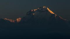 Sunrise on Dhaulagiri I (8,167 m) (Stewart Miller Photography) Tags: dhaulagiri sunrise nepal himalaya mountain highest