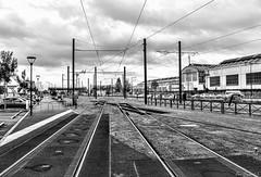 2016_10_23-H17_37_45-N4151-M1 (HelpyLP) Tags: rail tramway train lane batignolles crossing nantes france factory perspective croisement vanishing