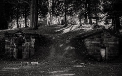 Tombs at Woodlawn, Halloween 2014 (LJS74) Tags: woodlawncemetery elmirany cemetery tomb tombstone gravemarker grave gravestone blackandwhite bw monochrome landscape