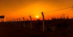 Barrier (mithila909) Tags: cable pier subset bridge night sky skyline serene dusk outdoor landscape sun tree piller rezorwire barried