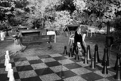 IMG_8881_Fotor03 (Ela's Zeichnungen und Fotografie) Tags: hannover congresszentrum stadt stadtpark landschaft natur herbst laub blätter bäume sonnenlicht person frau schach spiel schwarzweiss