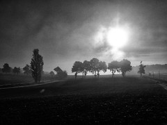 Soleil d'hiver (@phr_photo) Tags: landscape paysage landscapedreams brume brouillard matin morning france