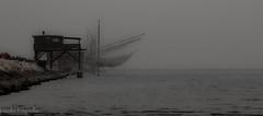 trabucchi. (paolotrapella) Tags: trabucco mare sea water acqua