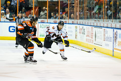 "Missouri Mavericks vs. Ft. Wayne Komets, November 12, 2016, Silverstein Eye Centers Arena, Independence, Missouri.  Photo: John Howe/ Howe Creative Photography • <a style=""font-size:0.8em;"" href=""http://www.flickr.com/photos/134016632@N02/30869276802/"" target=""_blank"">View on Flickr</a>"