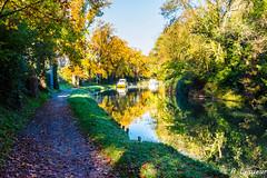 Automne sur le canal du midi (Shoot Enraw) Tags: 18200mmf3556 canaldumidi navigation automne aude trbes octobre