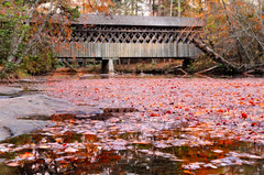 Leaves in the Creek.jpg (Chatterstone Photography) Tags: poolesmill creek bridge hdr park 3xp fall autumn leaves