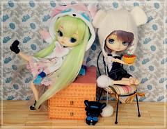 Happy birthday girls! (Pliash) Tags: dal doll cute kawaii pullip cinnamoroll 10th anniversary girl lolita bear sylveon pokemon explore