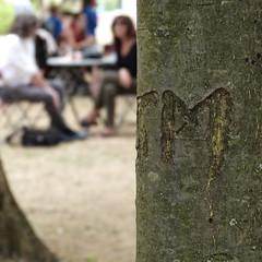 Les amoureux (Mathieu Rosati) Tags: parc amoureux coeur arbre
