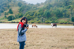Da Lat (dolosan) Tags: dalat vietnam travel animal horse landscape girl people vietnamese