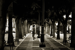 Between (Hernan Piera) Tags: blancoynegro arboles hombre perspectiva fotografiacallejera homem rvore fotografiaderua pretoebranco man tree perspective streetphotography blackandwhite foto fotografia photo photography imagen image pic fotografo hernanpiera photographer