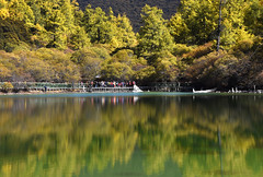 Pearl Lake  (Mel s away) Tags: daocheng sichuan china    mtchenresig  chanmelmel mel melinda melindachan water reflection mirror tree plant autumn   pearllake lake larch  pine nature reserve snowmountain